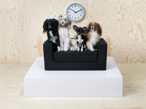 ikea muebles mascotas